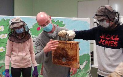 Rencontre avec un apiculteur en 3ème A